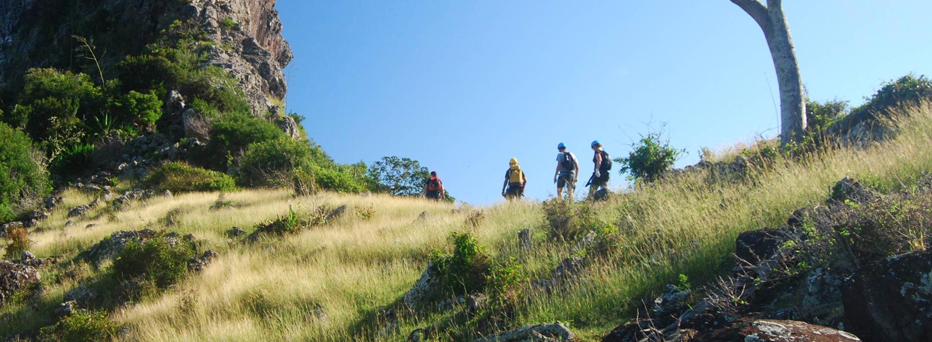 hiking-trekking-trail