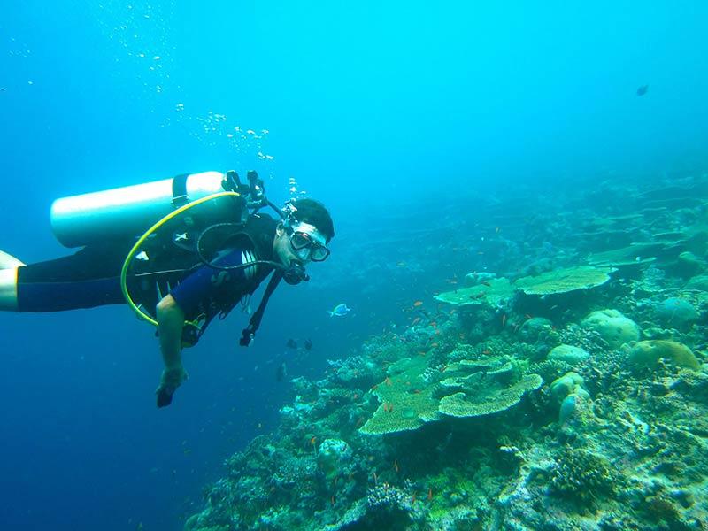 diving-261585_1920
