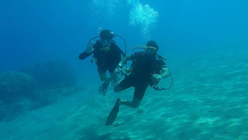 diving-778494_1280